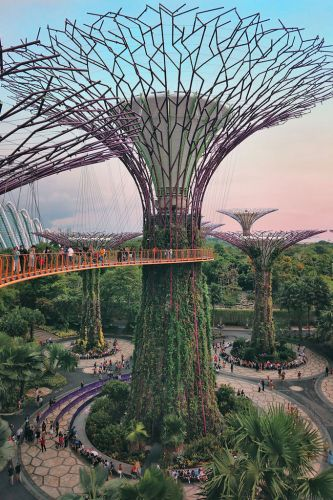 Gardens by the Bay - Best Things to do and Places to see in Singapore's Wonder Park