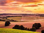 Wessex holidays: The joys of exploring the unspoilt landscapes of Hardy country