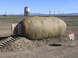 Do you dig it? The incredible Airbnb that looks like a giant potato