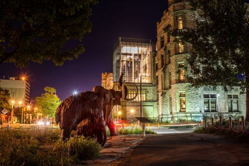 Five Epic Encounters to Experience in Ottawa Museums This Summer