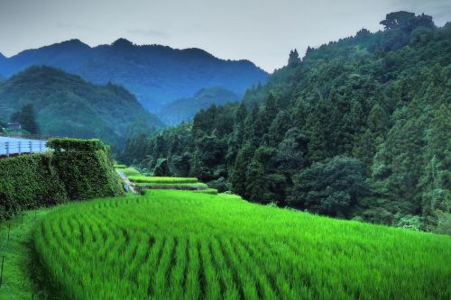 5 authentic and unusual places to stay in Japan