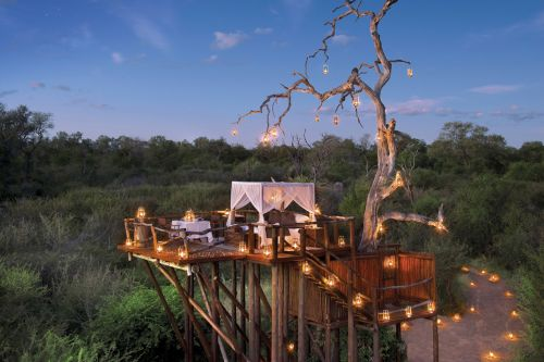 Timber! 11 of the best treehouses around the world