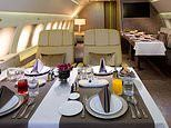 The greatest safari in the world where guests fly to African lodges in an Emirates A319 PRIVATE JET