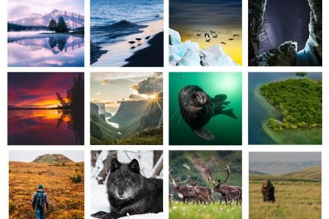 12 Canadian photographers share the nature they love