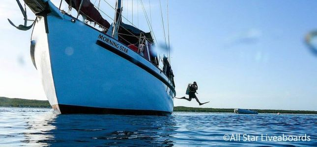 Bahamas Liveaboards: An Amazing SCUBA Diving Experience