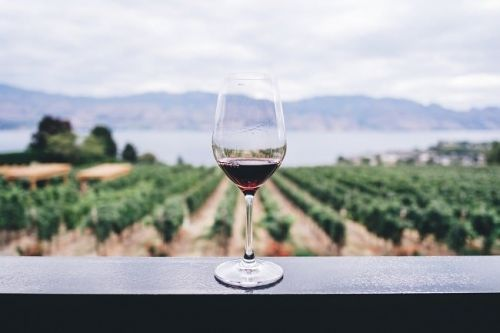 A Wine Drinkers Guide to Grapes and Geography