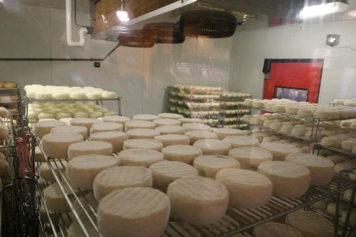 The World's Best Cheese is Now 'Made in America' as Rogue River Blue Named World's Best Cheese