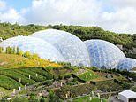 Eden Project to go ahead with £17m geothermal 'energy revolution'