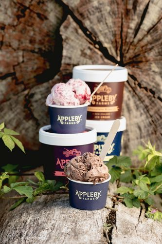 Behind Appleby Farms: Meet the Nelson neighbours who are churning out tummy-friendly ice cream