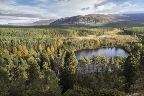7 of the best walks in Cairngorms National Park