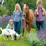 Kurow lavender farm's sweet smell of success