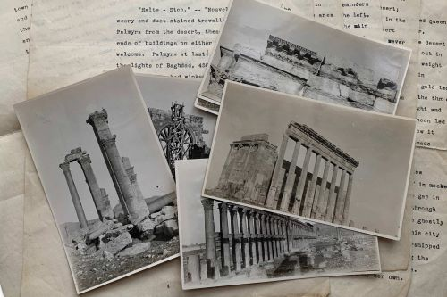 On the road to Palmyra: travels through 1920s Syria