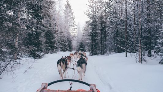 Guide to Lapland: What to do in northern Finland's enchanted winterscape