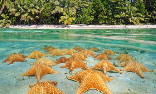 9 things you must do in Panama