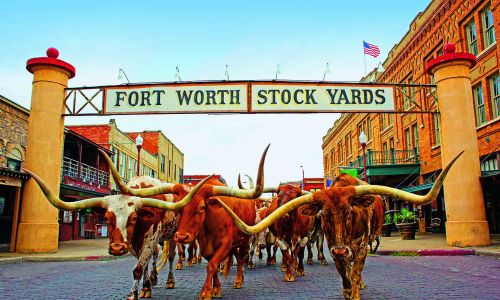 From honky-tonk to rodeo: Why you need to visit Fort Worth, Texas
