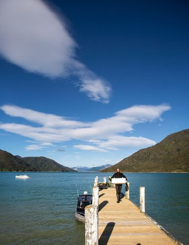 From dairy farming to mussels: A Dutch-Kiwi couple go off-grid with a lodge and mussel farm in the Marlborough Sounds