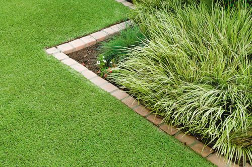 How to use grasses to transform a garden or landscape