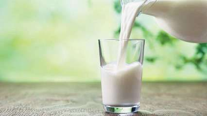 World Milk Day 2020: History, significance and this year's theme