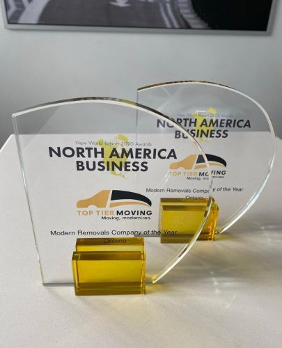 Top Tier Group Inc. Awarded North American Business Award 2020