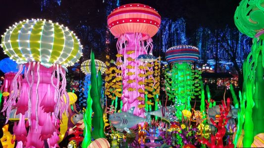 Jungle Island Takes Spotlight in Miami with Luminosa Festival Of Lights from October 5, 2019 - January 8, 2020