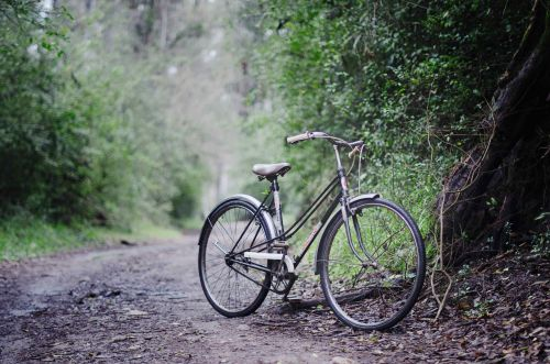 6 best cycling trails in Singapore for a dose of fresh air