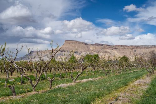 How to Spend a Perfect 3 Days Outdoors in Grand Junction Colorado